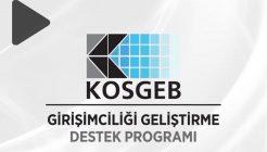 KOSGEB Hangi Projelere Destek Veriyor?