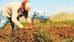 Çiftçilerin Beklediği Müjdeli Haber Türkşeker'den Geldi!