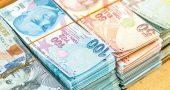Ocak 2021 Piyasa Beklentileri ve Türk Lirası