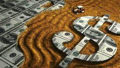 Forex ile Kakao, Mısır, Buğday ve Pamuk Ticareti Yapabilirsiniz